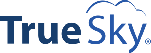 TrueSky - Sage X3 Budgeting and Planning